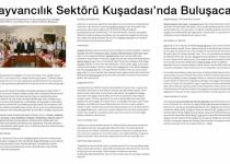 Livestock Sector to Meet in Kusadasi